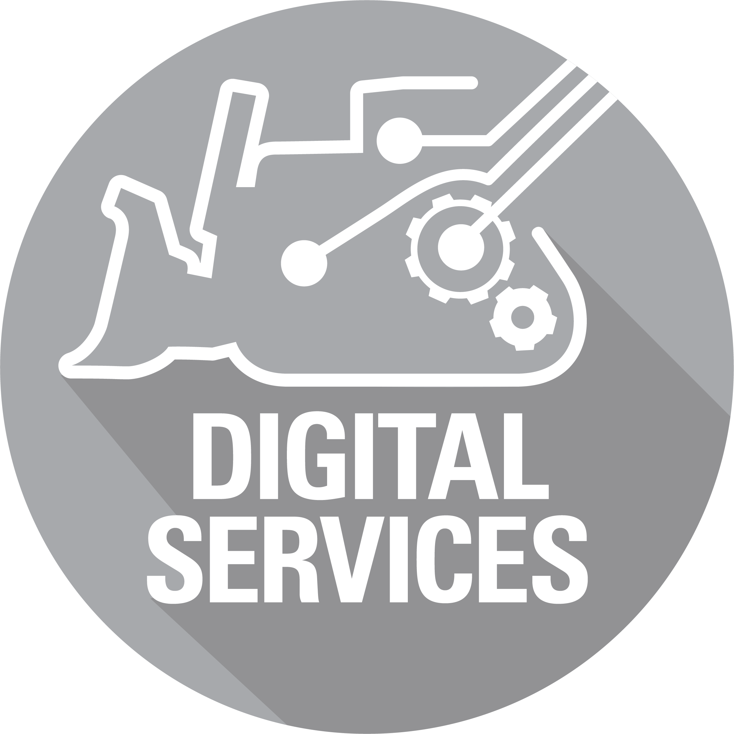 Digital Services's thumbnail image'